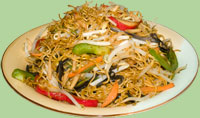 Stir fried noodles w/shredded vegetables